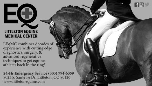 Littleton Equine