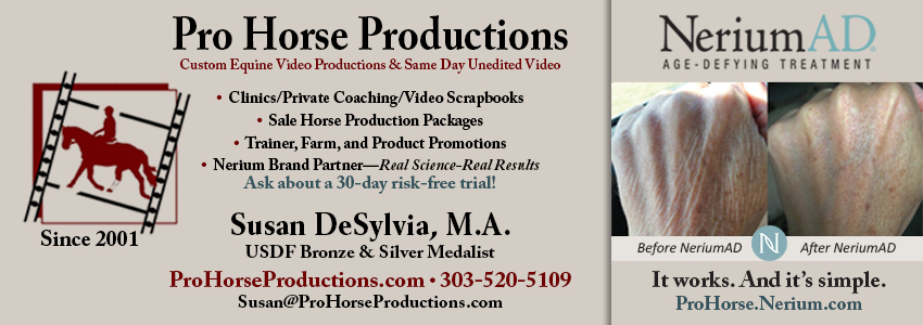 Pro Horse Productions